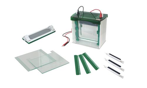 JY-CZ-BL Rapid SSR vertical electrophoresis tank