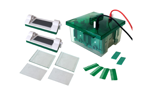 JY-Mini-P4 Vertical Mini Protean Electrophoresis Cell