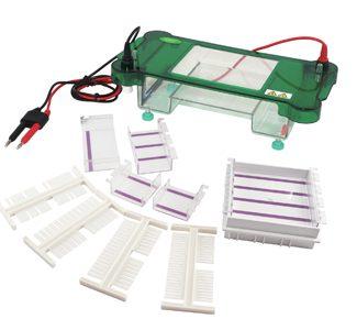 Molecular Biology Instrument