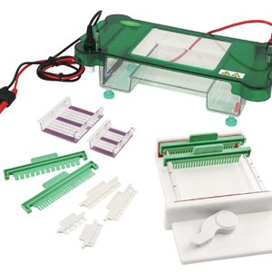 JY-SPFT Horizontal Electrophoresis Cell