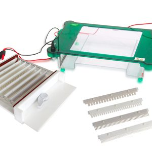 JY-SPHT Horizontal Electrophoresis Cell