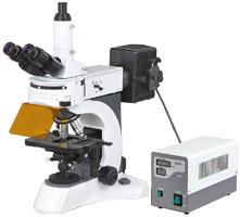 N-800F Laboratory Biological Fluorescent Microscope