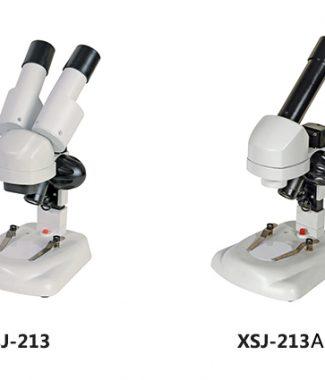 XSJ-213